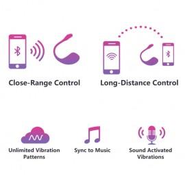 Vibratore Telecomandato Lush 2 di Lovense info 2